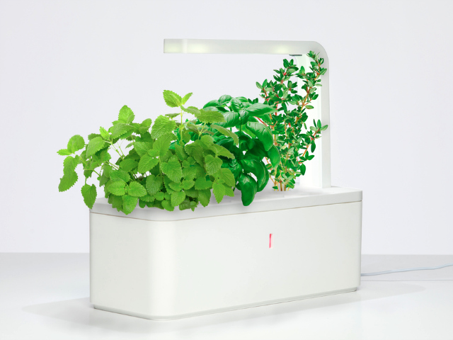 Click grow smart herb garden indoor gardening made for Indoor gardening made easy