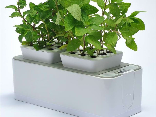 Zerosoil mini indoor garden requires no gardening skills for Indoor gardening gadgets