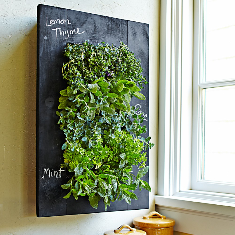 Turn your wall green with grovert living wall planter for Living wall planter